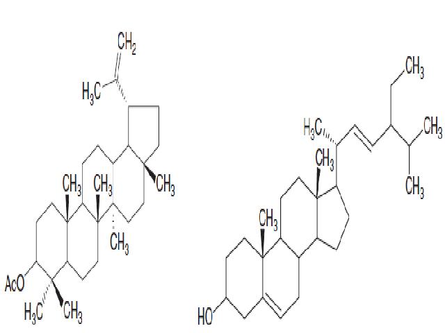 Figure 1 & Figure 2