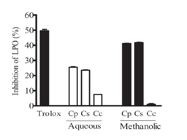Effect of Centaurea sp. extracts (1 mg/mL) and trolox (85 μg/mL) on lipid peroxidation