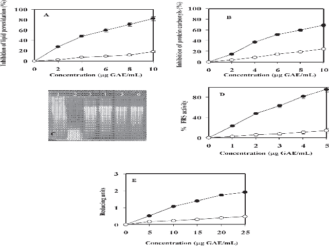 Antioxidant potency of ASFP (-●-) and ASBP (-○-)