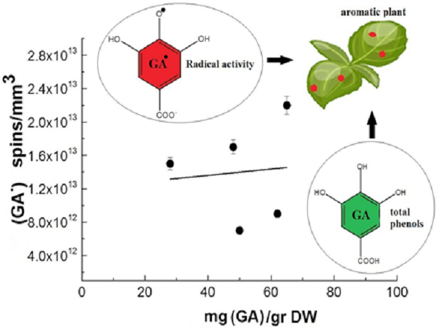 Gallic Acid Radical Generation in Aromatic Plants: A Combined EPR and UV-Vis Spectroscopic Approach