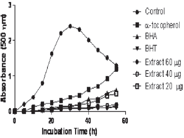 Total antioxidant activities of Carthamus tinctorius extract (20 μg/ mL) and standard antioxidant compounds such as BHA, BHT and α-tocopherol at the concentration of 60 μg/mL (BHA: butylated hydroxyanisole, BHT: butylated hydroxytoluene)