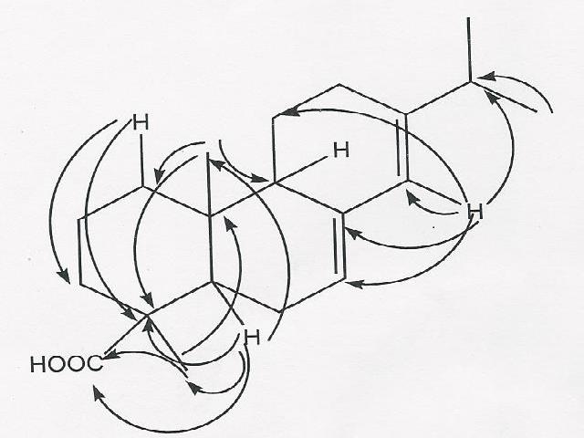 HMBC correlations of abietic acid