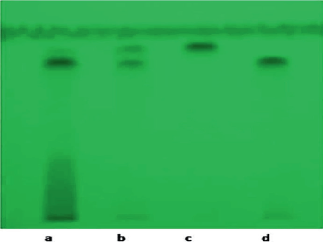 HPTLC finger printing of ethyl acetate fraction of E. jambolana L. with isolated compounds U1 and U2