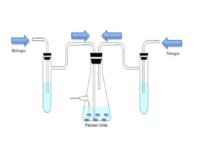 Schematic diagram of the set up for hydrogenation of OXANO• in the presence of Platinum Oxide and Nitrogen.