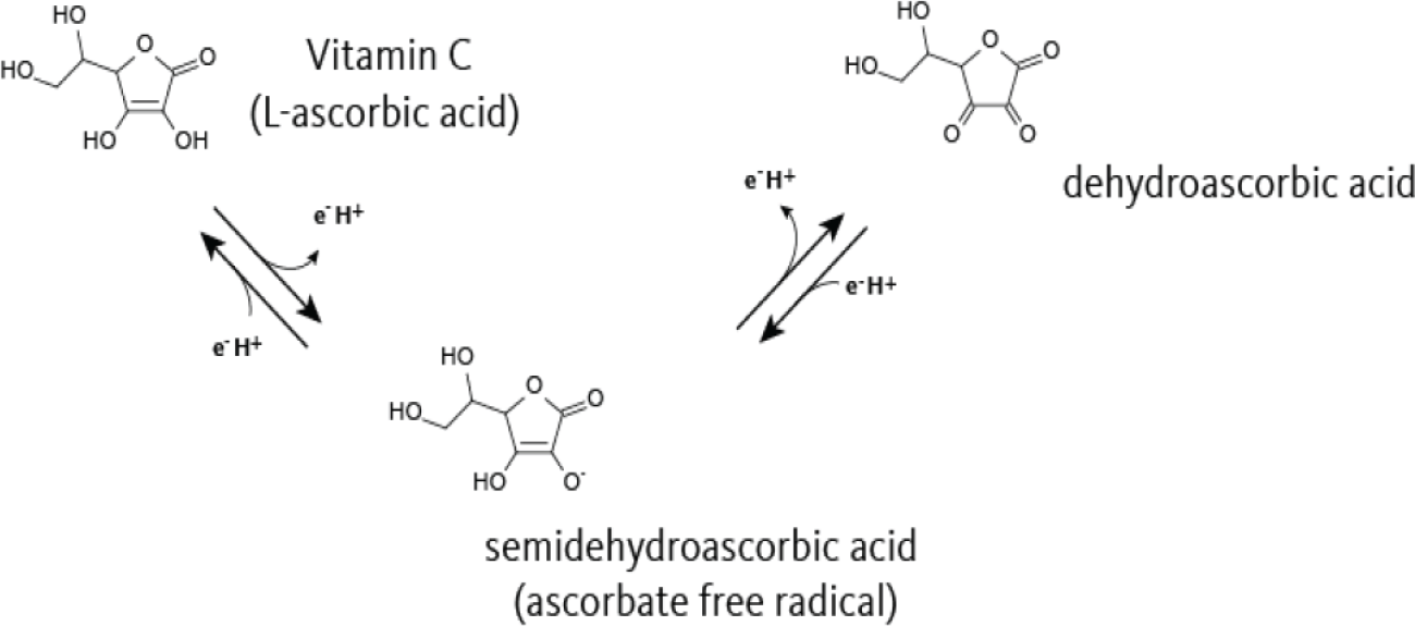 Oxidation of ascorbic acid.
